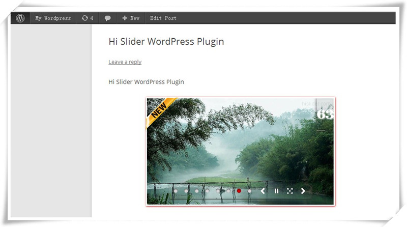 display wordpress plugin slider